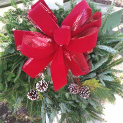 Featured Plants & Flowers - Eckerts Greenhouse - Holiday_wreathweb