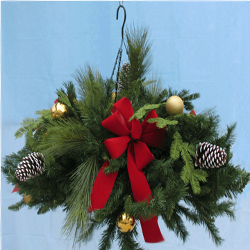 Featured Plants & Flowers - Eckerts Greenhouse - holiday_wkndr2web