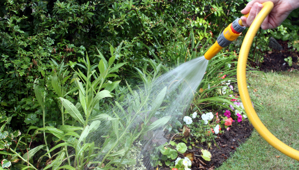 Your Plants Called- They're Thirsty! - Plant Nursery: Michigan Gardening Tips | Eckert's Greenhouse - Watering-the-Garden