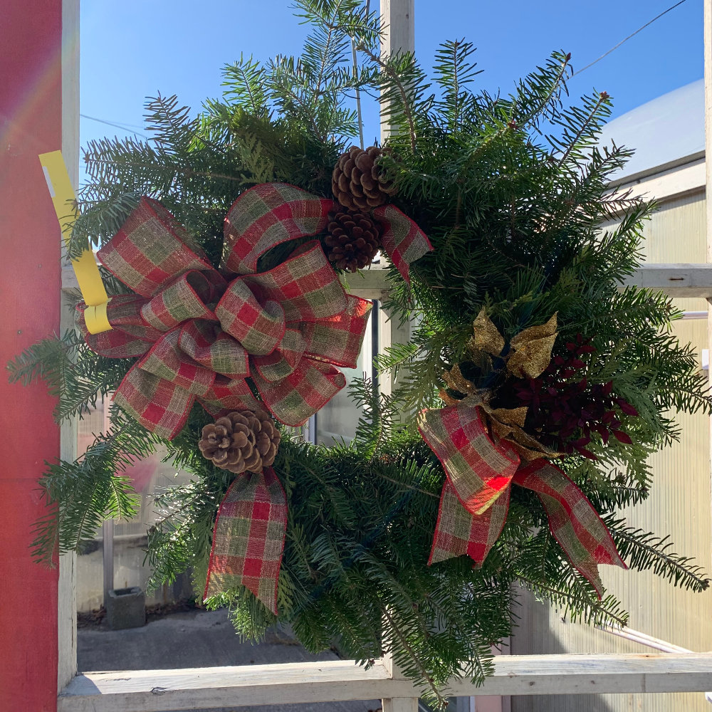 Featured Plants & Flowers - Eckerts Greenhouse - wreaths19
